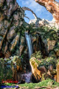 Pandora Waterfall in Disney's Animal Kingdom