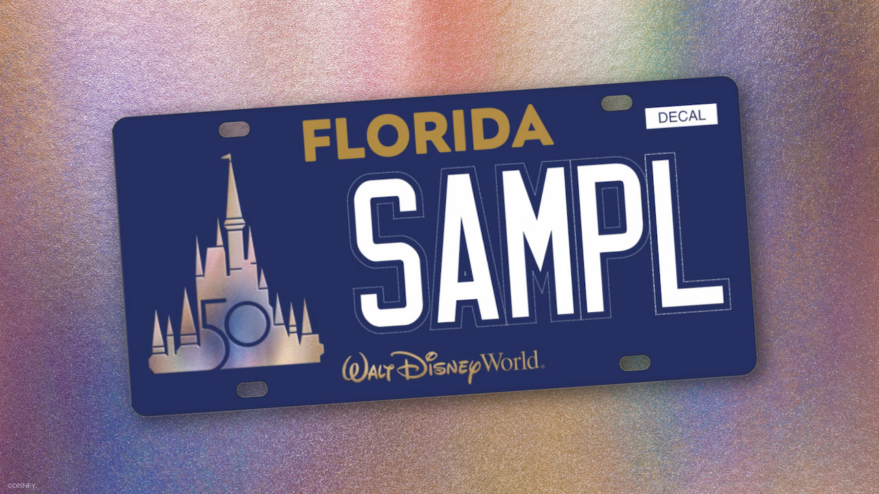 This New Disney Item Will Have You Ready to Pack Your Bags for Florida! - AllEars.Net