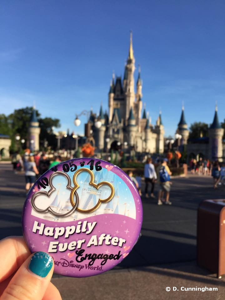 Engagement at the Magic Kingdom