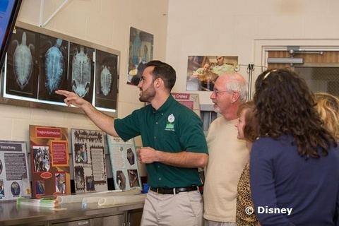 backstage-tales-disney-2.jpg