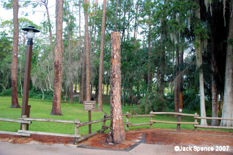 Lawn mowertree at Fort Wilderness