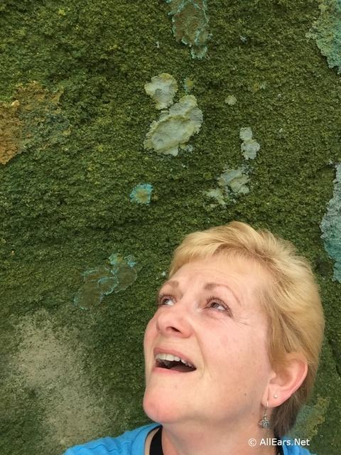 moss-wall-17-1.jpg