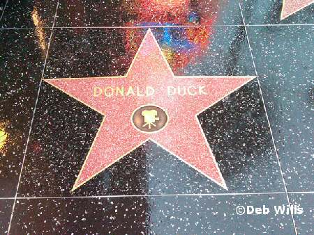 Donald's star
