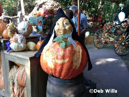 Big Thunder Pumpkin Ranch