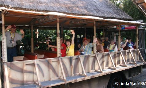 Kilimanjaro Safari Meet