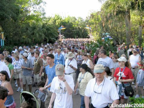 Animal Kingdoms 10th Anniversary Crowd awaiting Ceremony