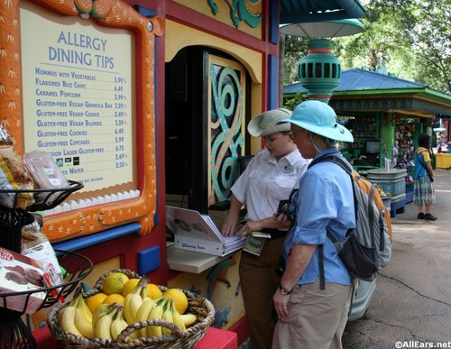 Allergy Friendly Dining Tips Kiosk at Animal Kingdom