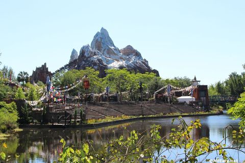 animal-kingdom-may-2016w.JPG