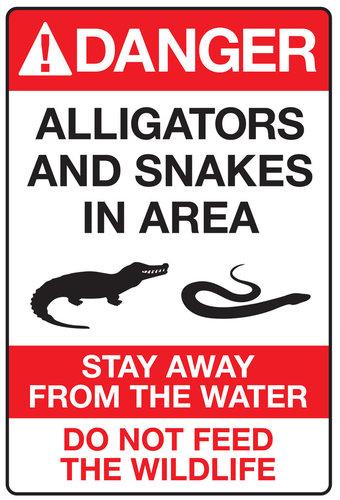 disney-alligator-sign.jpg