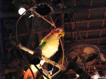 Tiki Birds in Adventureland at Disneyland
