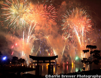 How to Get Tickets for our SOLD OUT Special Evening in Epcot on 12/5/15