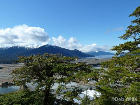 Disney Wonder Juneau Alaska Glacial Gardens
