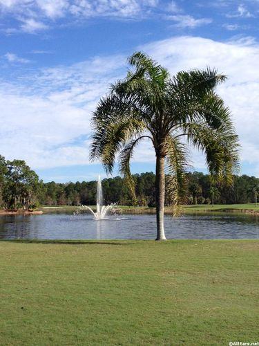 palm-golf-24.JPG