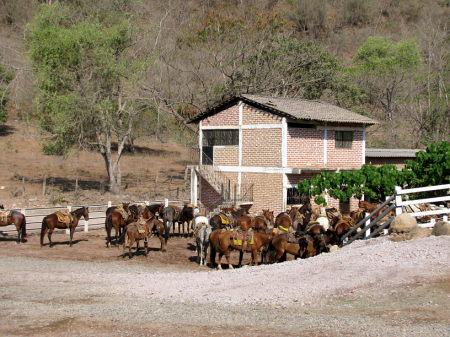Rancho Capomo Puerto Vallarta