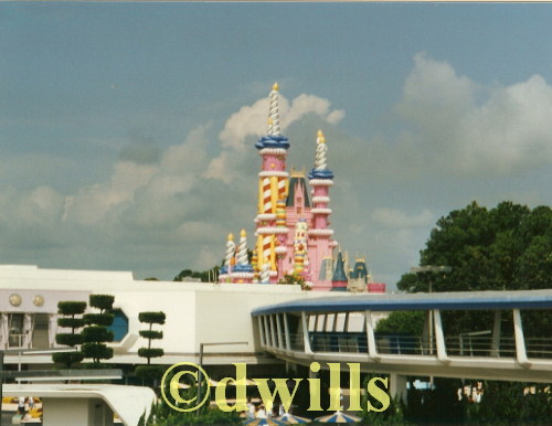 25th Birthday Magic Kingdom Castle