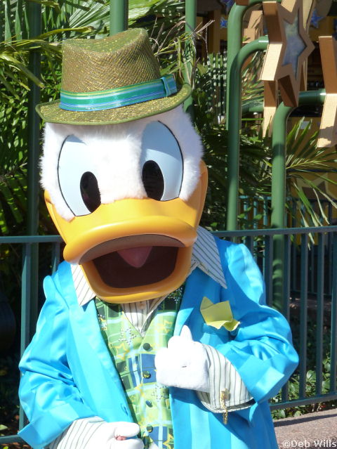 Donald's new Costume at Disney's Hollywood Studios