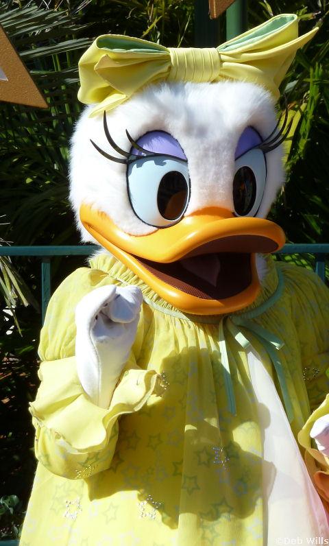 Daisy's new Costume at Disney's Hollywood Studios