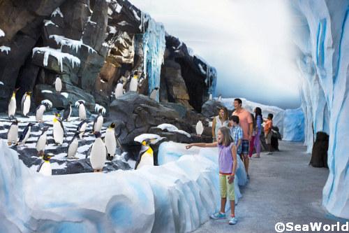 Antarctica-Penguin-Habitat.jpg