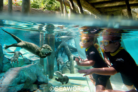 SeaWorld Freshwater Oasis