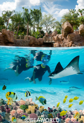 SeaWorld The Grand Reef Snorkel