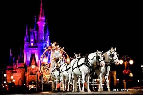disney-fairy-tale-wedding.jpg