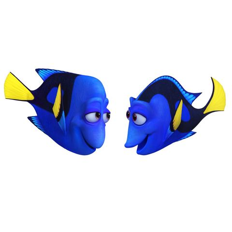 finding-dory-charliejenny.jpg