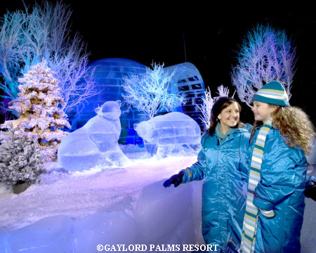 Gaylord Palms' ICE!