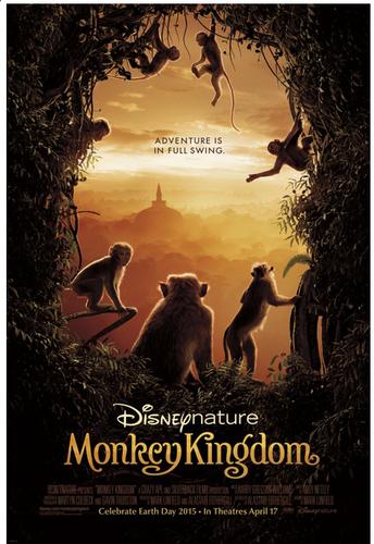 monkey-kingdom-6.jpg
