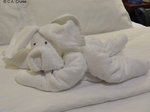 Towel_art