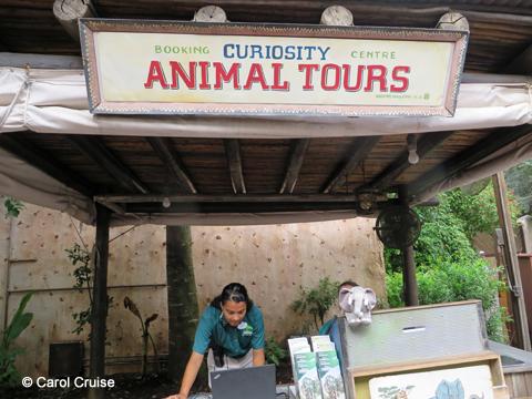 Animal Tours