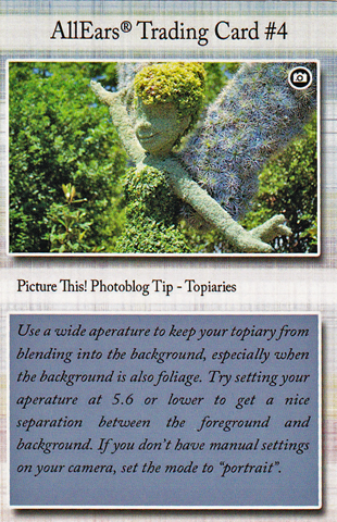 AllEars_Trading_Card_4