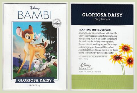 Bambi Daisies