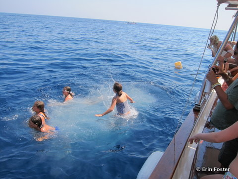 Capri-swimming.jpg