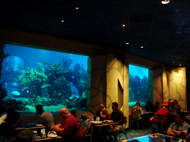 Coral Reef Dining Room2