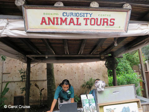 Curiosity Animal Tours