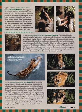 Disney Magazine Winter 2003-04 pg 41