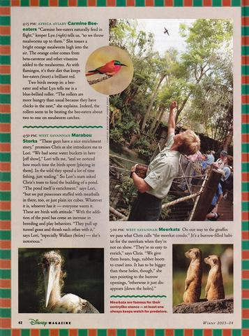 Disney Magazine Winter 2003-04 pg 42