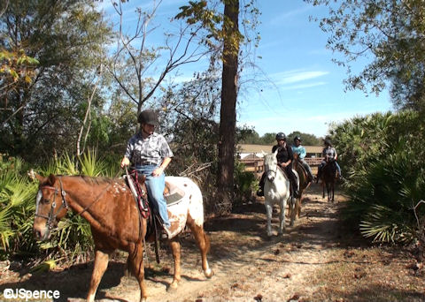 Fort Wilderness Trail Ride