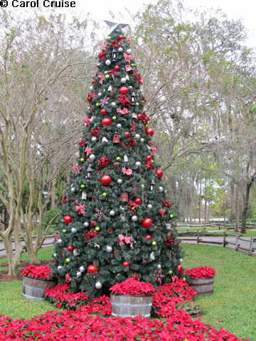 Fort Wilderness Tree