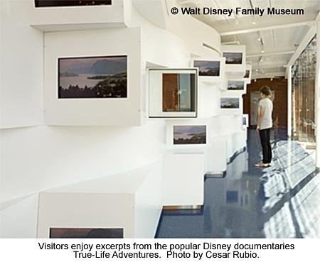Gallery%208%201.jpg
