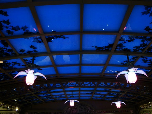 Nightime Sky Ceiling