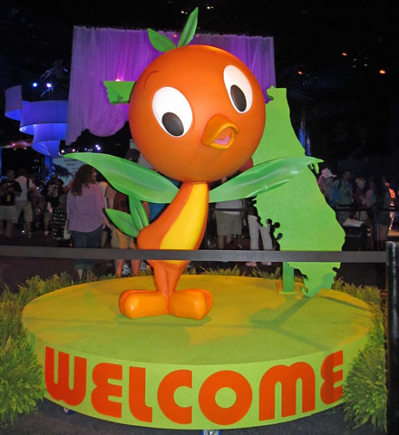 Orange Bird Decor 2011