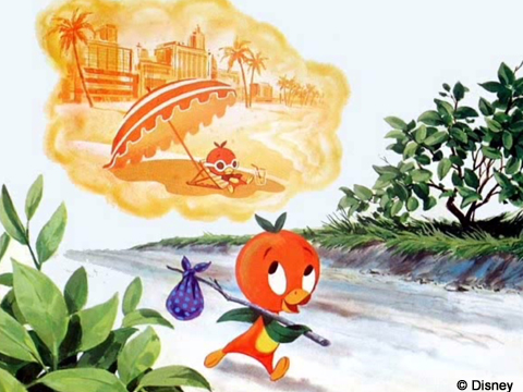 Orange Bird thoughts of beach