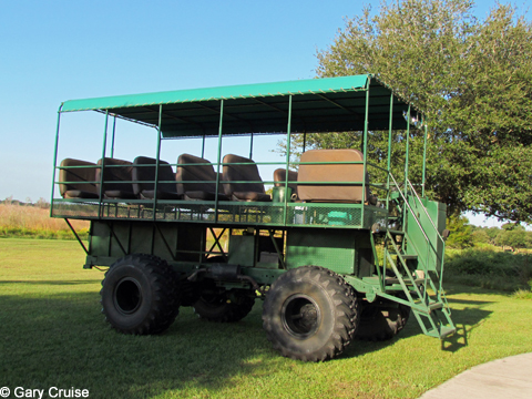 Our Swamp_Buggy