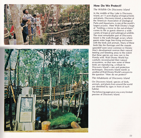 Textbook_Discovery_Island