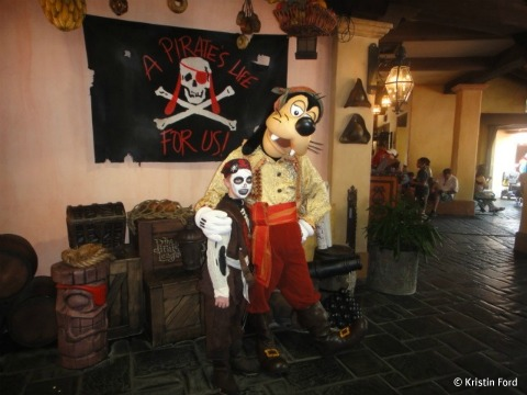 pirate-goofy-photo.jpg