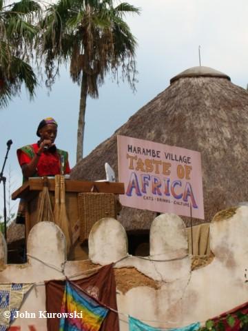 tasteofafrica02.jpg