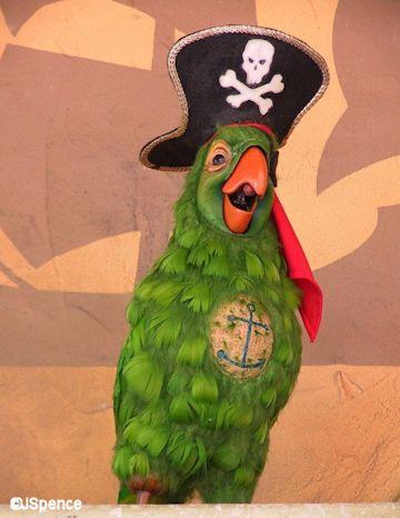 Pirates of the Caribbean Barker Bird