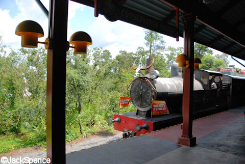 Train Arriving at Conservation Station