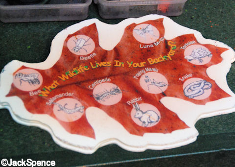 Leaf Grease Board